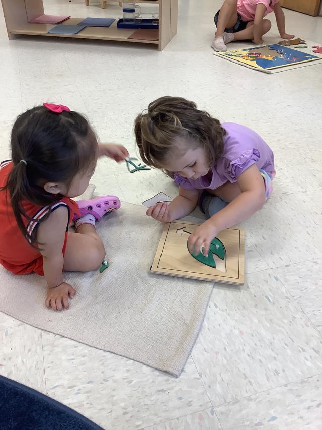 Montessori Preschool Kindergarten
