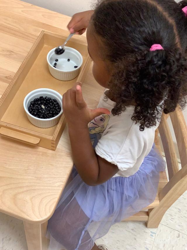 Montessori kindergarten, practical life, sensorial, spooning, fine motor skills, gross motor skills, new school, city school
