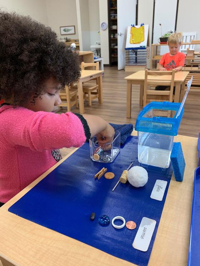Guidepost Montessori Frisco TX Private School   Sorting work